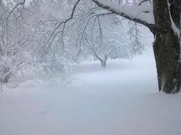 Zimu ni na slici